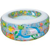 INTEX Aquarium Pool [58480] - Kolam Renang Portable